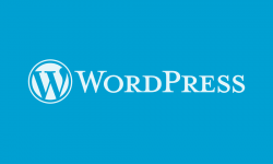 5 Mistakes to Avoid in WordPress